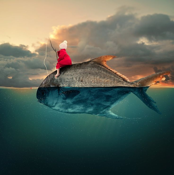 surreal fish.